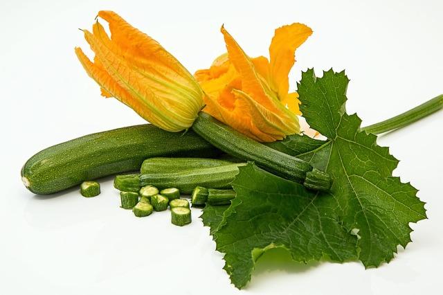 zucchini-572542_1280